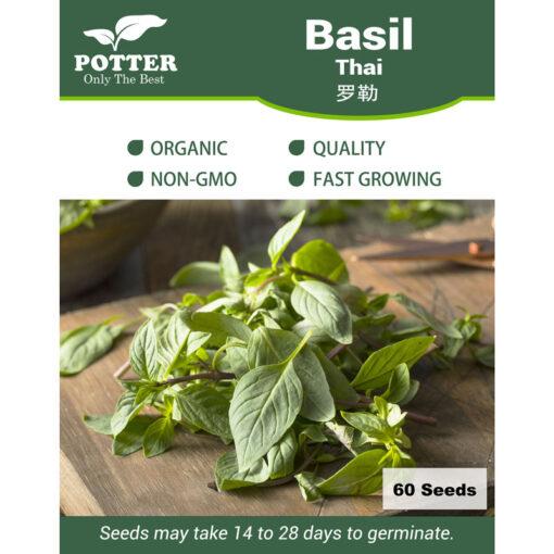 Thai Basil herb seeds